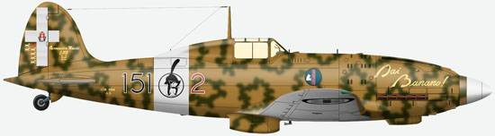 The MC.202 from a structure of 151-st squadron of 20-th group of air force of Italy, September, 1942.