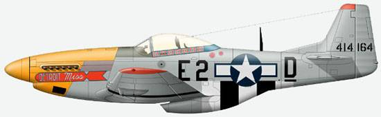 The P-51 D 1-st lieutenant E.Drju from 375-th Sqn, 361-st  Group, AF USA, October, 1944